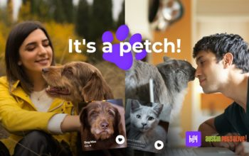 HILY Partners With Animal Shelter to Find Homes For Cats and Dogs